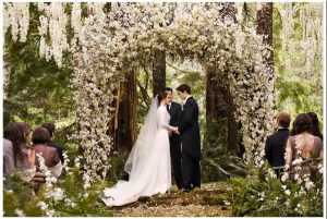 Breaking Dawn Marriage Scene